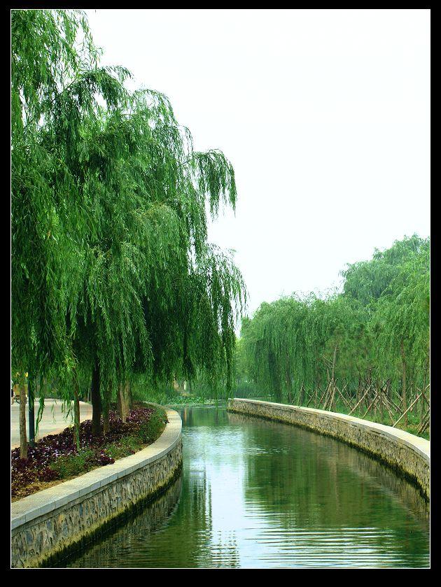 洛阳隋唐城遗址植物园掠影
