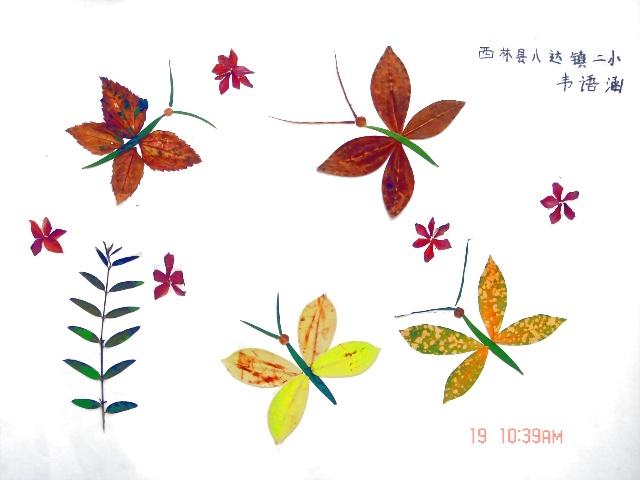 韦语涵的树叶拼图