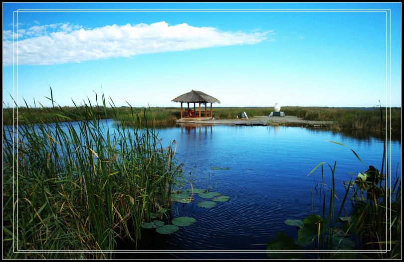 丹顶鹤的故乡----扎龙自然保护区之美景篇