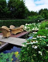 荷兰花园拜访特辑