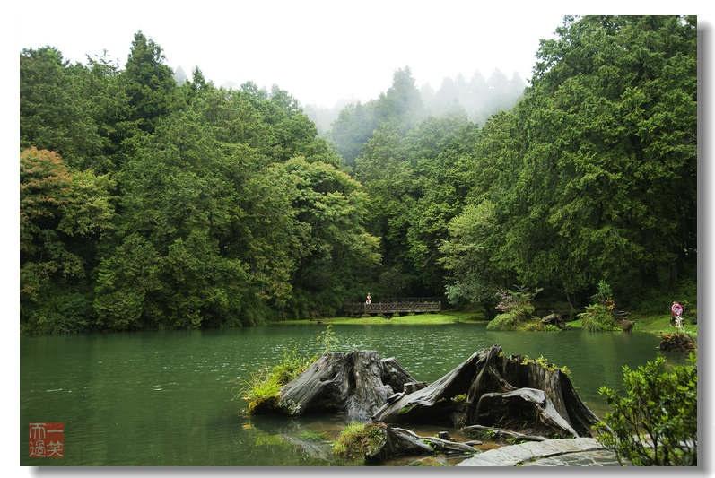 阿里山是台湾著名旅游风景区,位于台湾省嘉义县东北,属于玉山
