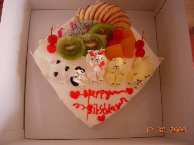 看这蛋糕上有两只小猫,一只小狗,一只小兔子