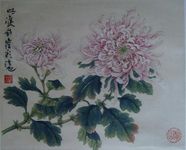 工笔菊花画法步骤图
