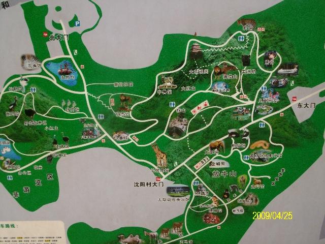 游南京红山森林动物园