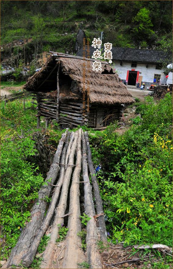 神农架原始森林核心无人区穿越图片图片