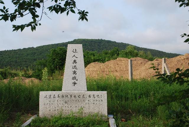 《中俄瑷珲条约》,《中俄北京条约》和《中俄伊犁条约》,强占中国土地