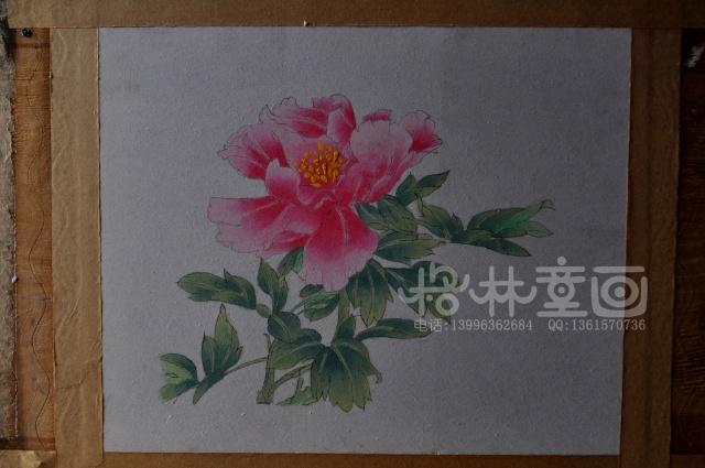 彩铅海棠花画法步骤