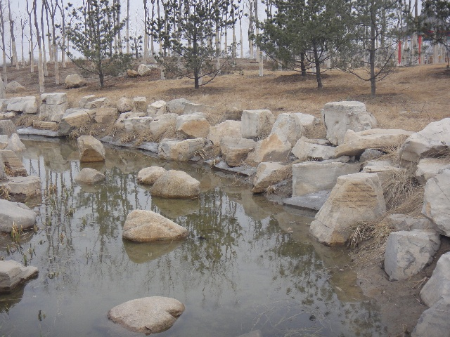岸石是摆放在二层的平台,这样等水漫过底部后,就会感觉石头是浸