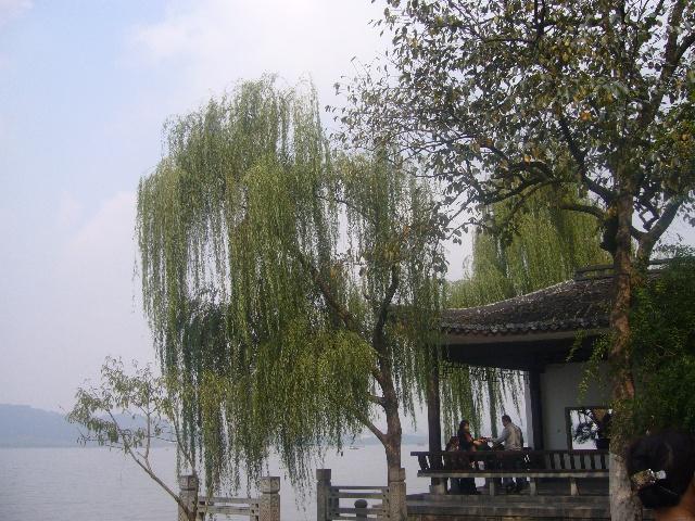 杭州西湖,西溪湿地公园游记