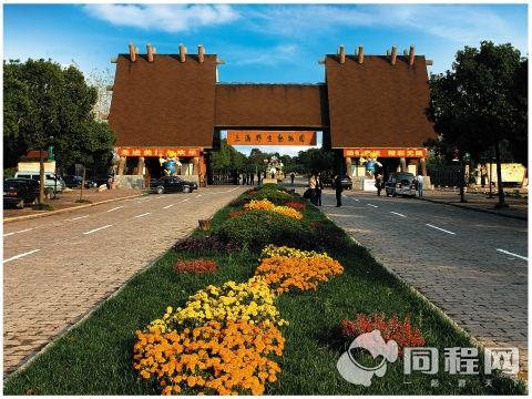 定安县到上海野活泼物园游览线去上海野生动物园路线