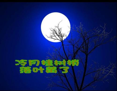 桂花月亮矢量图