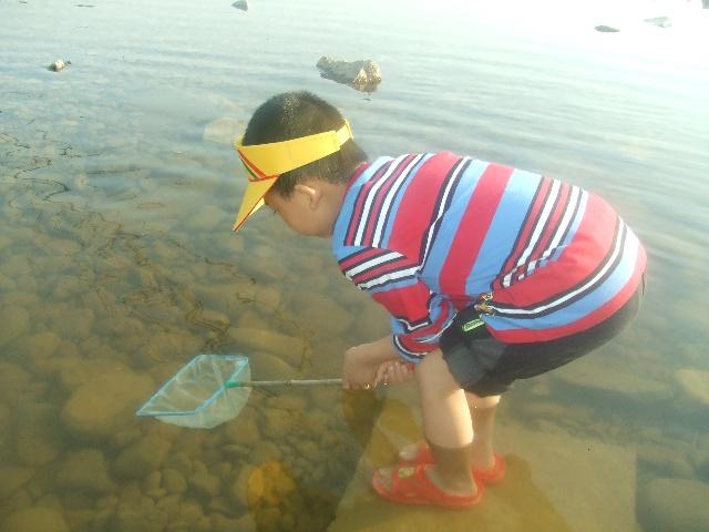 抄鱼网编织方法